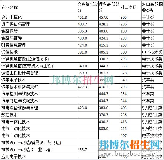重庆电子工程分数线