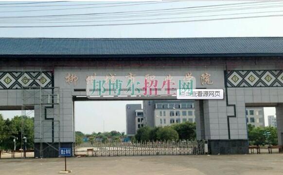 柳州城市职业学院招生办联系电话