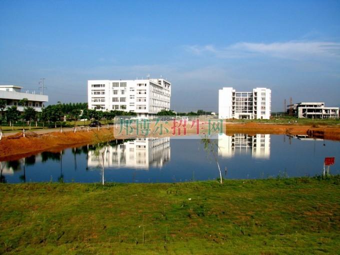 贵港职业学院网站网址
