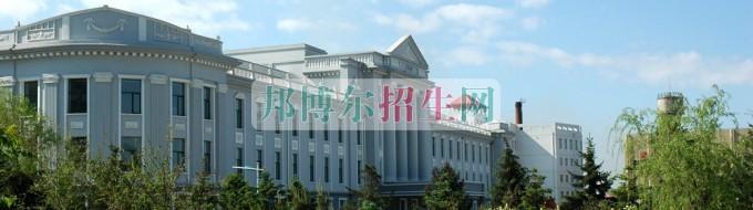大庆职业学院网站网址