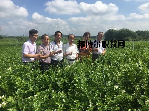 四川省农业广播电视学校2020年招生办联系电话