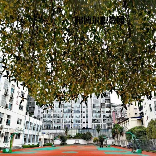 四川省成都市财贸职业高级中学校地址在哪里