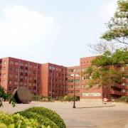 京山卫生学校