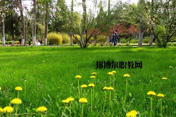 双江县职教中心2020年招生简章