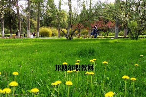 双江县职教中心2020年报名条件、招生要求、招生对象