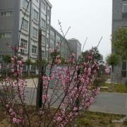 许昌工商管理学校