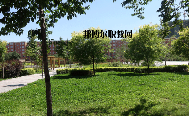安国职业技术教育中心招生