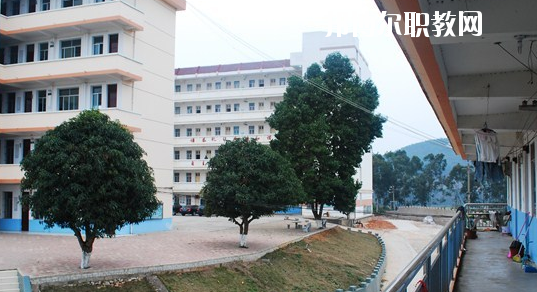 扶绥县职业技术学校2020年招生办联系电话