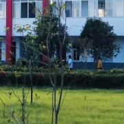 芜湖同文艺术学校
