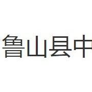 鲁山县中等专业学校