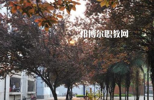 枣阳第二职业高级中学4