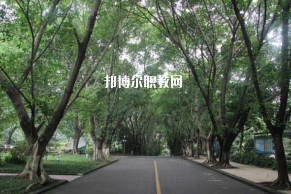 重庆2020年初中生可以读什么卫校