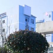 安庆大别山科技学校
