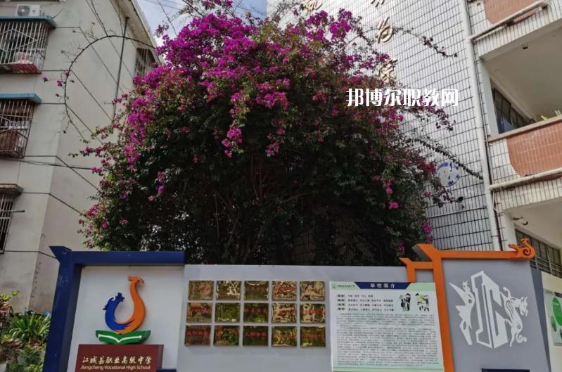 江城县职业高级中学2021年有哪些专业
