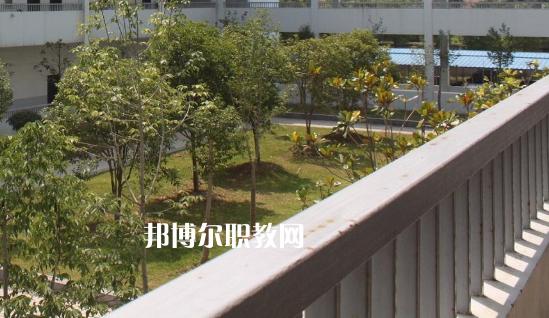 浙江2021年初中生能考中专吗