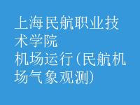 机场运行(民航机场气象观测)